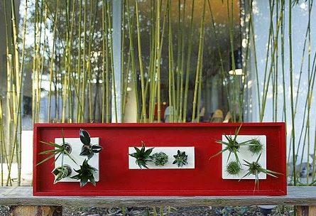 5 flowerbox