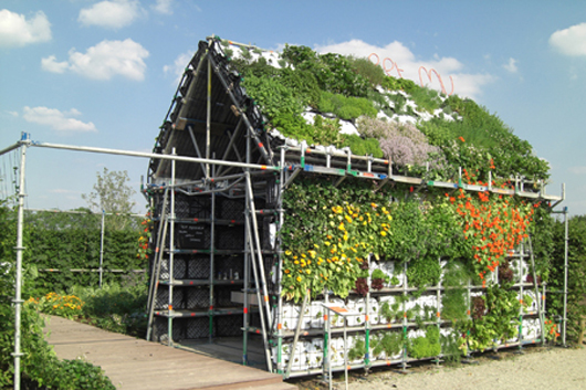 Eathouse_Arquitectura ECO_