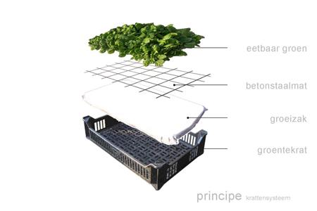 Eathouse_Arquitectura ECO_3